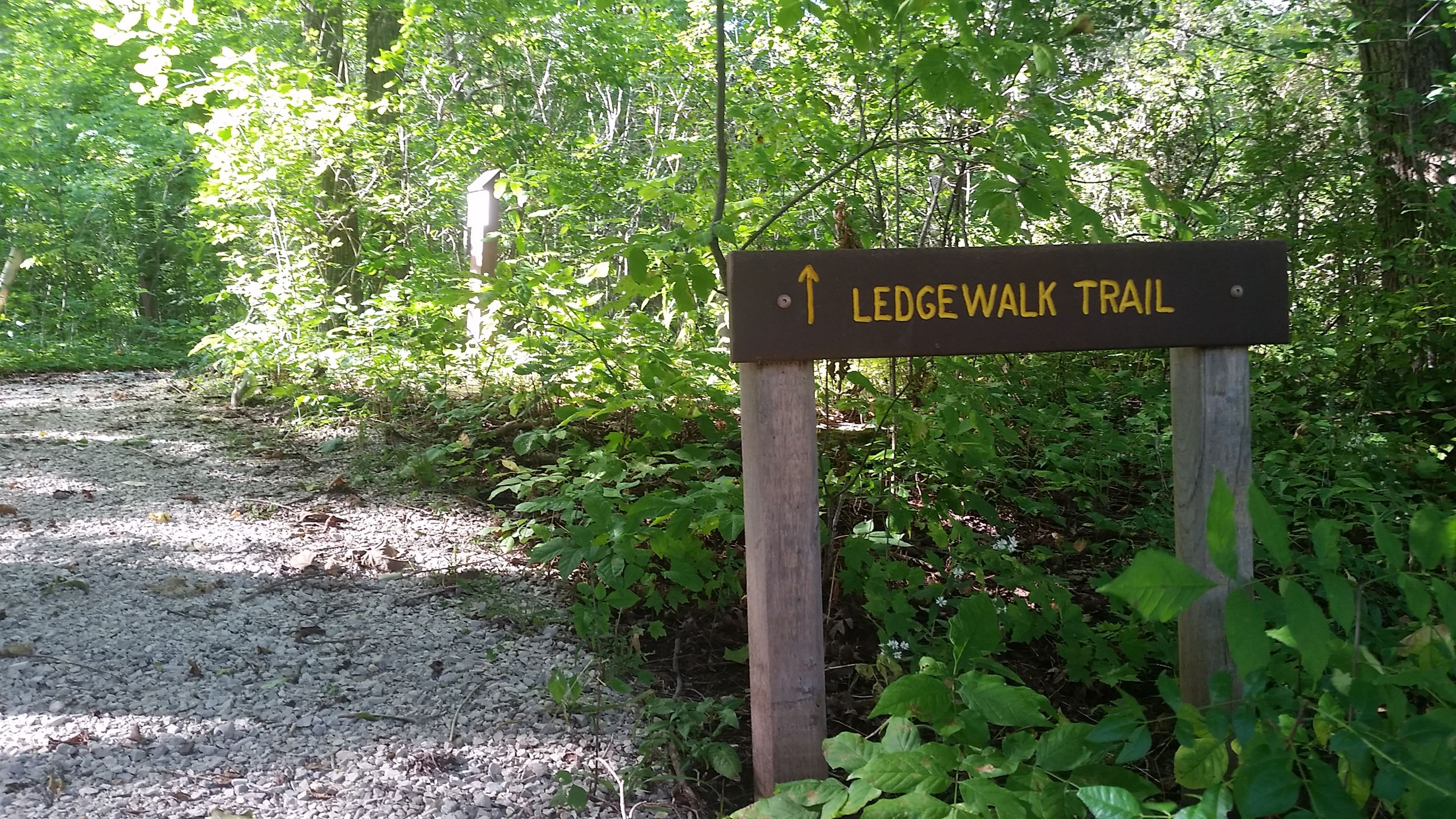 Ledgewalk trail sign in woods.