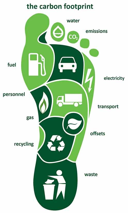 Footprint separated into what makes up a carbon footprint
